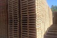 Paletes e madeira serrada